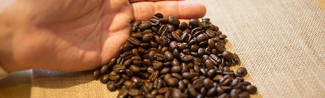 たくさんのコーヒー豆